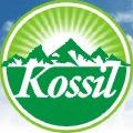 Kossil